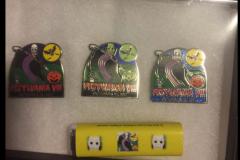 2017-pins